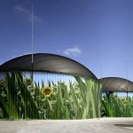 Biogas Mercato